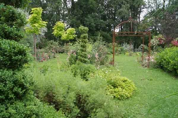 mxcprosengarten-39074_1jpg